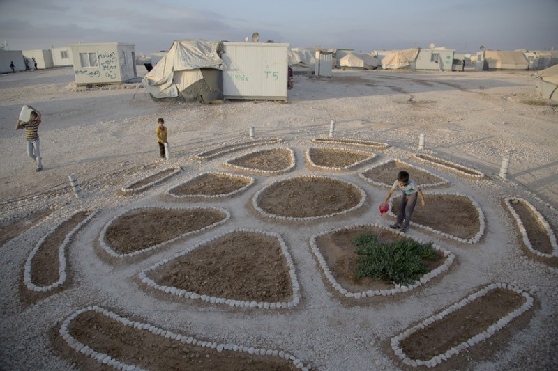 Secret gardens planted by Syrian refugees in Jordan