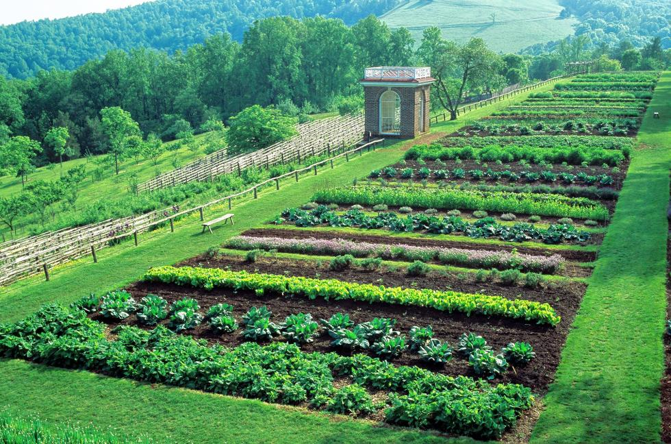 Vegetable garden design ideas with beautiful vegetable garden design - The White House Garden Gets Support To Endure From Burpee