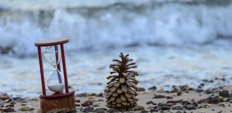 water-lebanon-time-pine-cone-660x3801.png