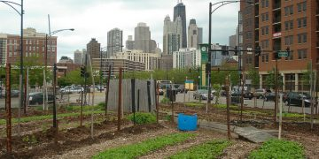 Join the urban farming movement
